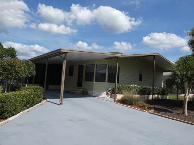 14436 Midfield Street, Brooksville, FL 34613 (MLS #W7833253) :: Bustamante Real Estate