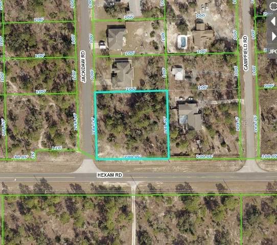 11058 Jackdaw Road, Weeki Wachee, FL 34614 (MLS #W7833260) :: The Lersch Group