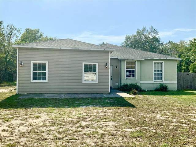 12193 Labrador Duck Road, Weeki Wachee, FL 34614 (MLS #W7833264) :: The Kardosh Team