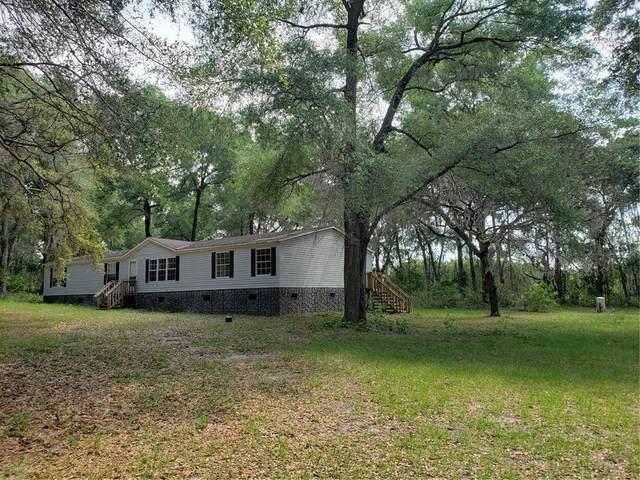 16360 Seminole Boulevard, Brooksville, FL 34601 (MLS #W7833271) :: Lockhart & Walseth Team, Realtors