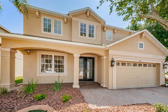 1132 Halapa Way, Trinity, FL 34655 (MLS #W7833273) :: Premier Home Experts