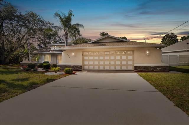 8345 Diver Lane, Spring Hill, FL 34608 (MLS #W7833279) :: RE/MAX Local Expert