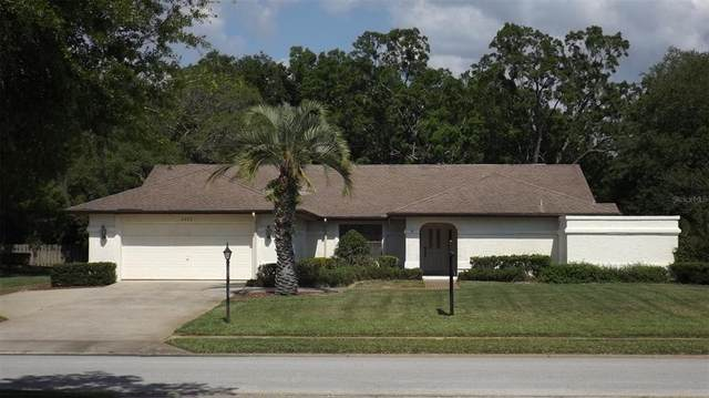 4282 River Birch Drive, Weeki Wachee, FL 34607 (MLS #W7833287) :: Lockhart & Walseth Team, Realtors