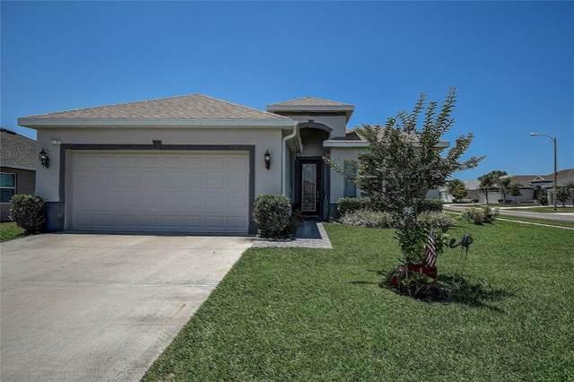 14655 Balloch Drive, Hudson, FL 34667 (MLS #W7833313) :: Aybar Homes