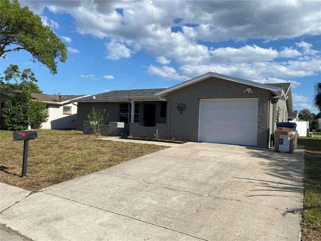 7320 Bimini Drive, Port Richey, FL 34668 (MLS #W7833321) :: Pristine Properties