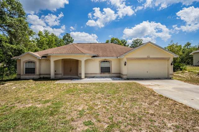 12350 Peregrine Falcon Avenue, Weeki Wachee, FL 34614 (MLS #W7833323) :: The Kardosh Team