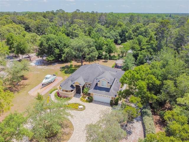 16550 Diagonal Road, Hudson, FL 34667 (MLS #W7833348) :: Bustamante Real Estate