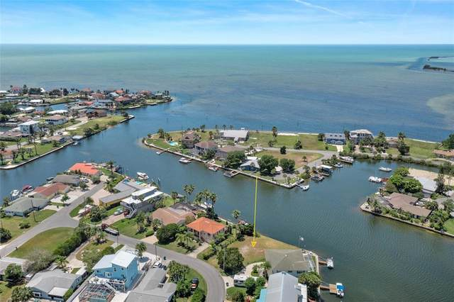 3245 Gulf Coast Drive, Hernando Beach, FL 34607 (MLS #W7833354) :: The Heidi Schrock Team