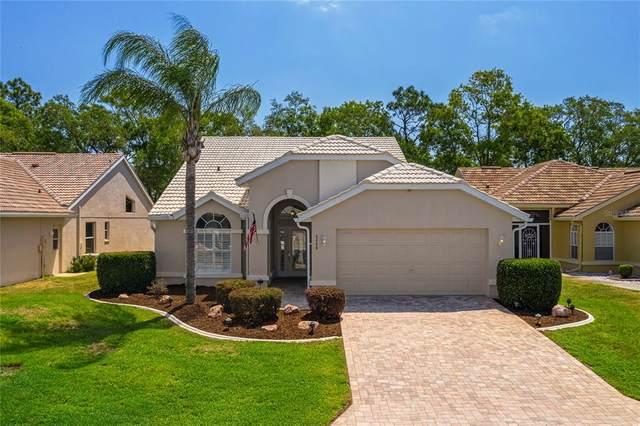 9458 Mississippi Run, Weeki Wachee, FL 34613 (MLS #W7833355) :: Your Florida House Team