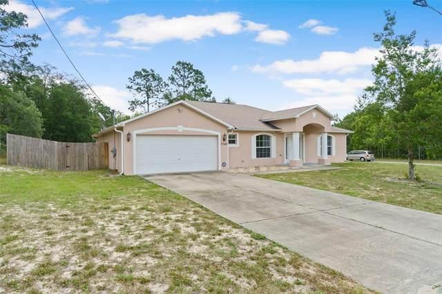 7349 N Santos Drive, Citrus Springs, FL 34434 (MLS #W7833378) :: Everlane Realty