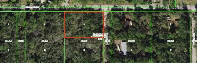 0 Barney Drive, Hudson, FL 34669 (MLS #W7833379) :: Team Borham at Keller Williams Realty