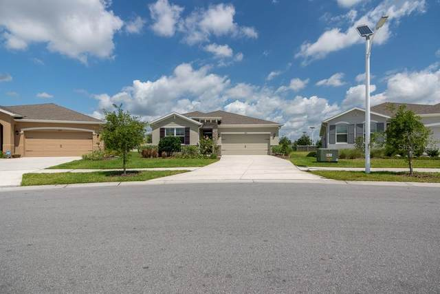 31686 Tansy Bend, Wesley Chapel, FL 33545 (MLS #W7833399) :: Premier Home Experts