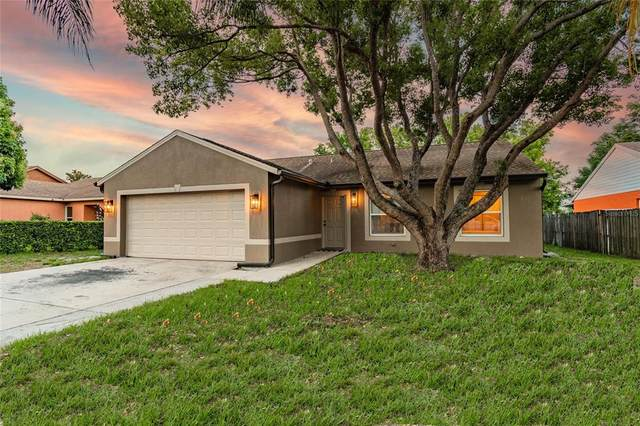 3677 Montclair Drive, Palm Harbor, FL 34684 (MLS #W7833409) :: Your Florida House Team