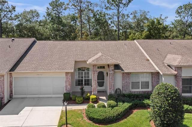 3073 Appleblossom Trail, Spring Hill, FL 34606 (MLS #W7833410) :: Premier Home Experts
