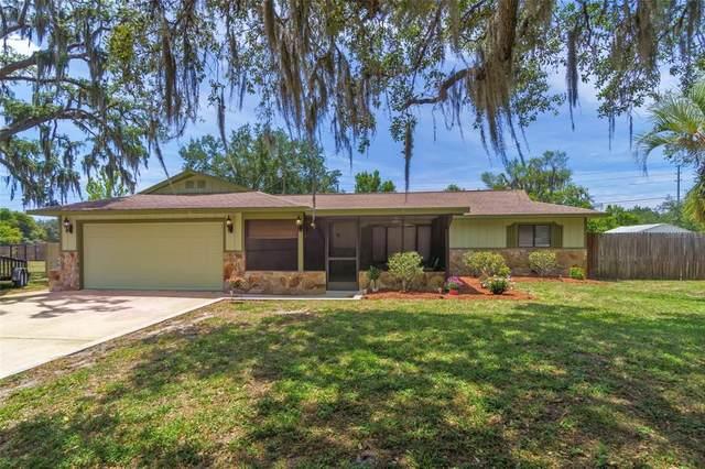 8939 Boyd Drive, New Port Richey, FL 34654 (MLS #W7833413) :: Griffin Group