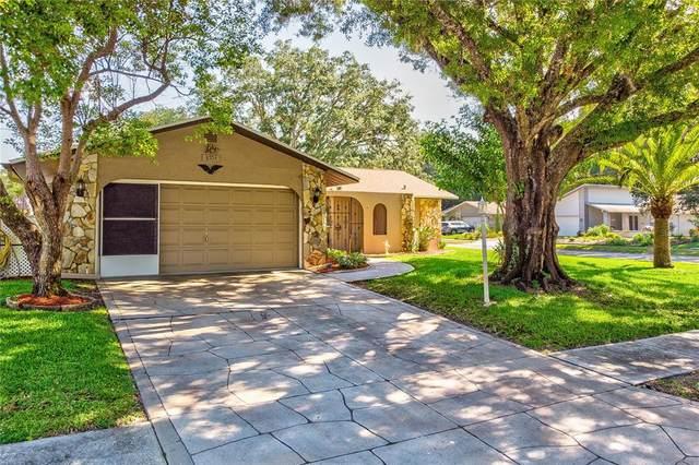 8703 Woodbridge Drive, New Port Richey, FL 34655 (MLS #W7833424) :: GO Realty