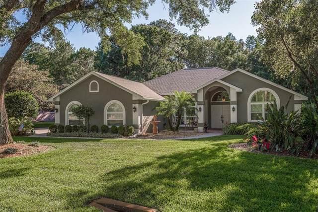 10722 Alico Pass, New Port Richey, FL 34655 (MLS #W7833465) :: Premier Home Experts
