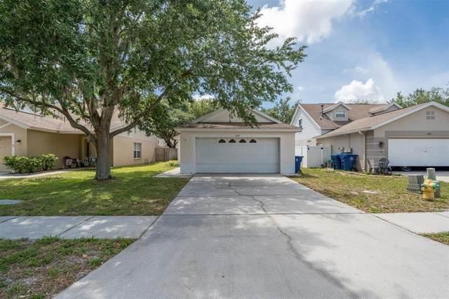 Trinity, FL 34655 :: GO Realty