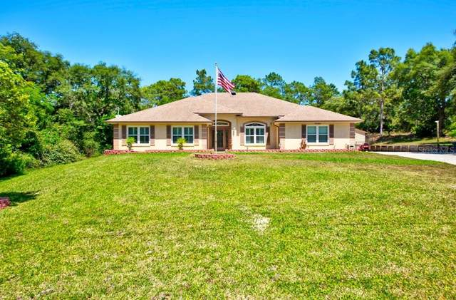 10564 Noddy Tern Road, Weeki Wachee, FL 34613 (MLS #W7833511) :: Premium Properties Real Estate Services