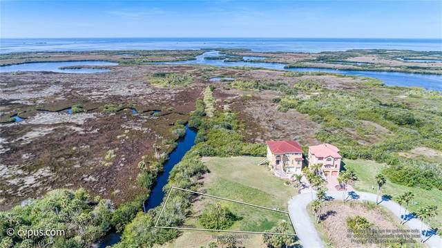 Emerald Pointe, Port Richey, FL 34668 (MLS #W7833515) :: Visionary Properties Inc