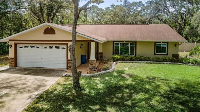 2125 Pepperell Drive, New Port Richey, FL 34655 (MLS #W7833516) :: New Home Partners