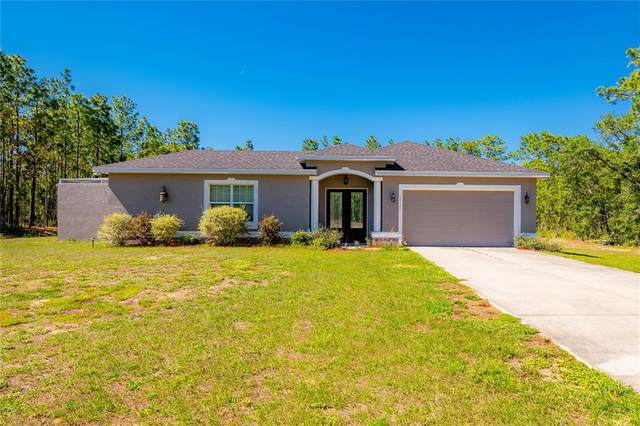 11145 Thrasher Avenue, Weeki Wachee, FL 34614 (MLS #W7833535) :: RE/MAX Local Expert