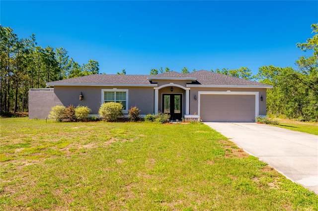 11145 Thrasher Avenue, Weeki Wachee, FL 34614 (MLS #W7833535) :: Premium Properties Real Estate Services