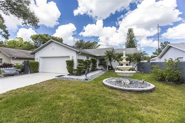 70 Squire Court, Dunedin, FL 34698 (MLS #W7833539) :: Positive Edge Real Estate