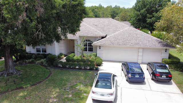 415 Mintwood Terrace, Tarpon Springs, FL 34688 (MLS #W7833554) :: Team Borham at Keller Williams Realty