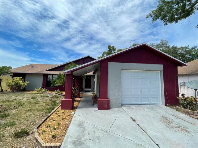 2515 Fieldcrest Court, Holiday, FL 34691 (MLS #W7833563) :: MVP Realty
