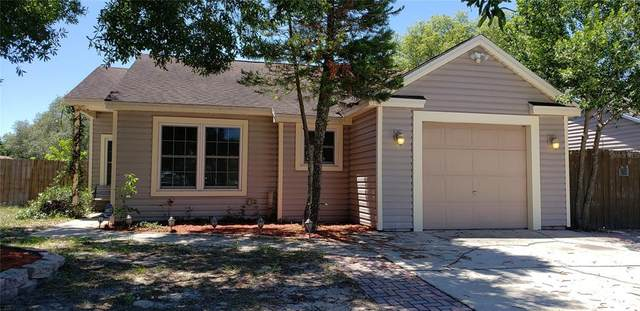 1998 Sheeler Oaks Drive, Apopka, FL 32703 (MLS #W7833597) :: New Home Partners
