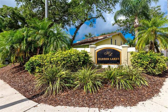 101 Winding Willow Drive, Palm Harbor, FL 34683 (MLS #W7833622) :: Griffin Group