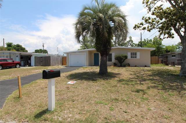 10608 Camelia Drive, Port Richey, FL 34668 (MLS #W7833626) :: The Duncan Duo Team
