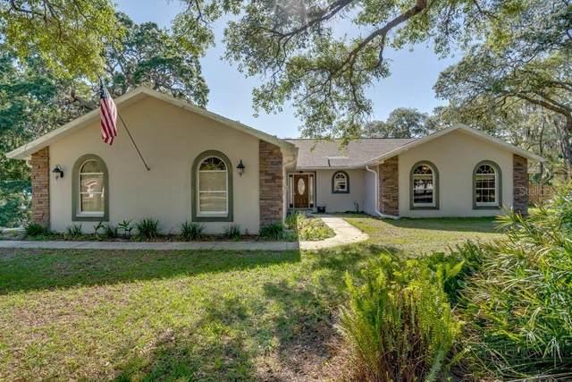 18812 Lansford Drive, Hudson, FL 34667 (MLS #W7833634) :: Your Florida House Team