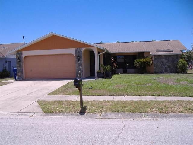 4539 Alligator Drive, New Port Richey, FL 34653 (MLS #W7833653) :: EXIT King Realty
