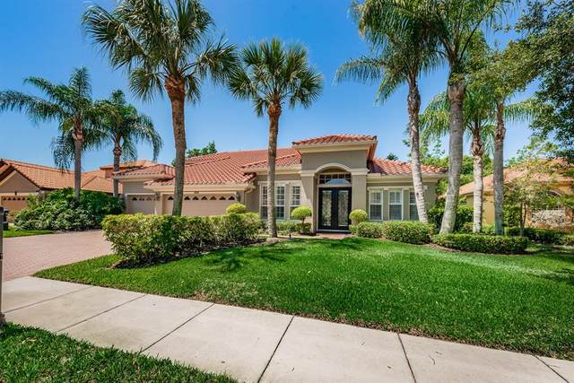10538 Garda Drive, Trinity, FL 34655 (MLS #W7833667) :: Delgado Home Team at Keller Williams