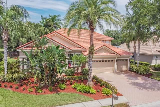 10545 Garda Drive, Trinity, FL 34655 (MLS #W7833677) :: Sarasota Property Group at NextHome Excellence