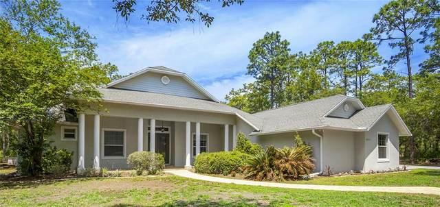 16471 Hardeman Junction, Weeki Wachee, FL 34614 (MLS #W7833696) :: Team Pepka