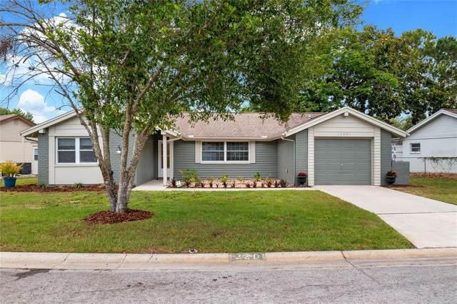 12201 Silk Oak Lane, Hudson, FL 34667 (MLS #W7833717) :: Your Florida House Team