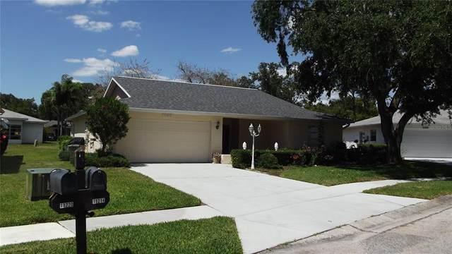 11214 Elderberry Drive, Port Richey, FL 34668 (MLS #W7833732) :: Team Borham at Keller Williams Realty