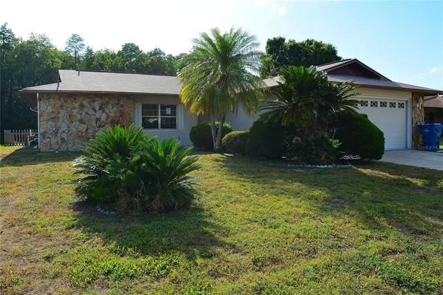 4539 Swallowtail Drive, New Port Richey, FL 34653 (MLS #W7833746) :: Pristine Properties