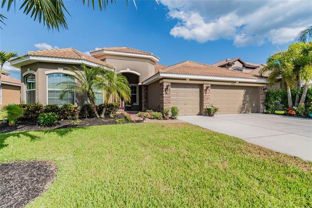 8746 New Alexandria Loop, New Port Richey, FL 34654 (MLS #W7833752) :: Armel Real Estate