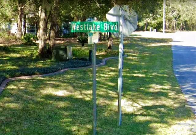 5078 Westlake Boulevard, Dade City, FL 33523 (MLS #W7833759) :: The Kardosh Team