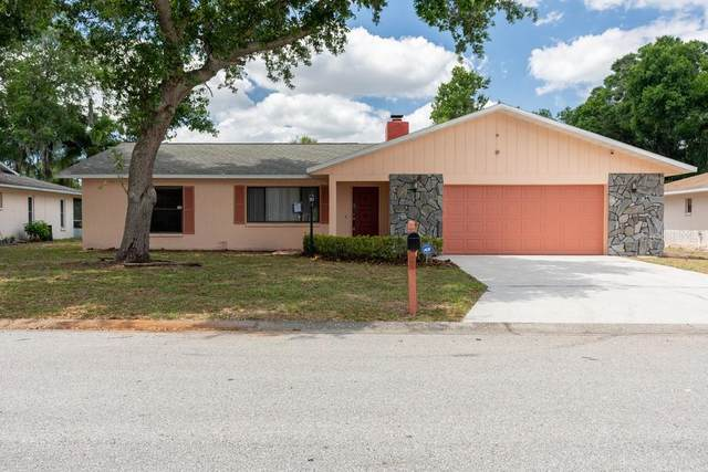 4077 Chisholm Drive, Sarasota, FL 34235 (MLS #W7833764) :: Your Florida House Team