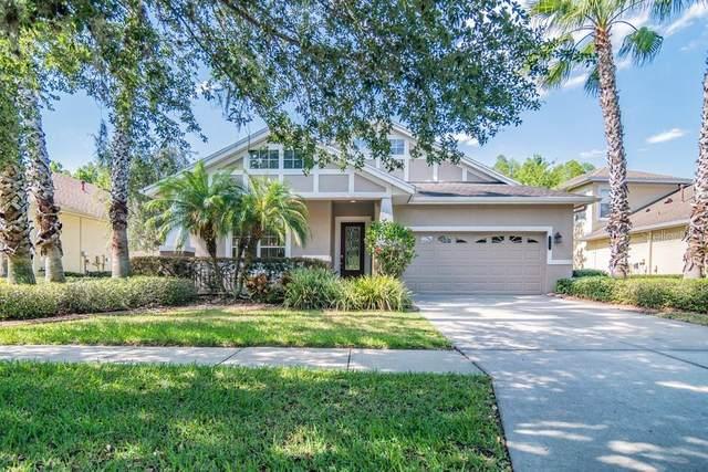 8028 Hampton Lake Drive, Tampa, FL 33647 (MLS #W7833786) :: Team Borham at Keller Williams Realty