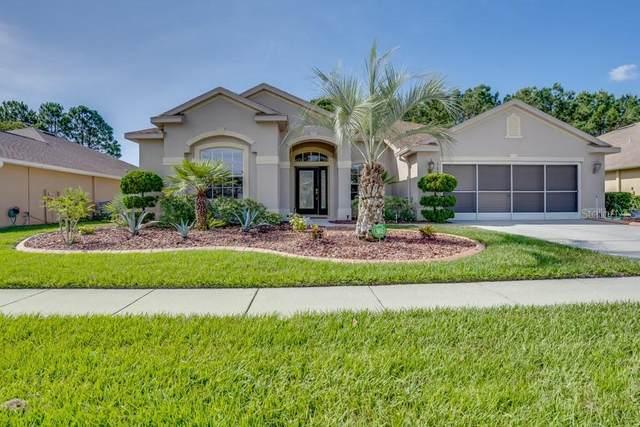 11684 Fairfield Court, Spring Hill, FL 34609 (MLS #W7833798) :: The Hesse Team