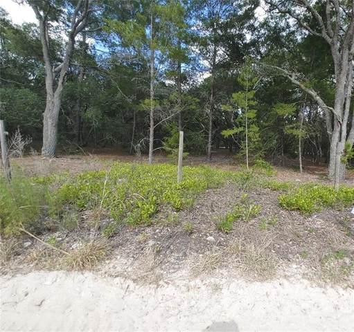 02 Elliot Lane, Hudson, FL 34667 (MLS #W7833834) :: Cartwright Realty