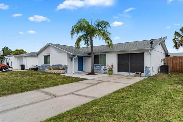 6241 Seabreeze Drive, Port Richey, FL 34668 (MLS #W7833838) :: Frankenstein Home Team
