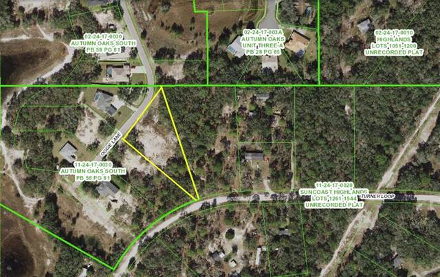 17942 Oggie Lane, Hudson, FL 34667 (MLS #W7833856) :: Delgado Home Team at Keller Williams
