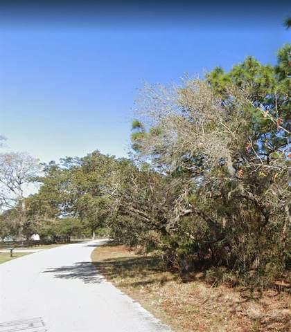 1 WILD CAT LN, New Port Richey, FL 34654 (MLS #W7833907) :: Gate Arty & the Group - Keller Williams Realty Smart